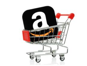 AMS PDA Amazon